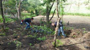 las-autoridades-municipales-expresan-que-acciones-como-estas-no-los-detendran-para-continuar-con-su-trabajo-de-reforestacion