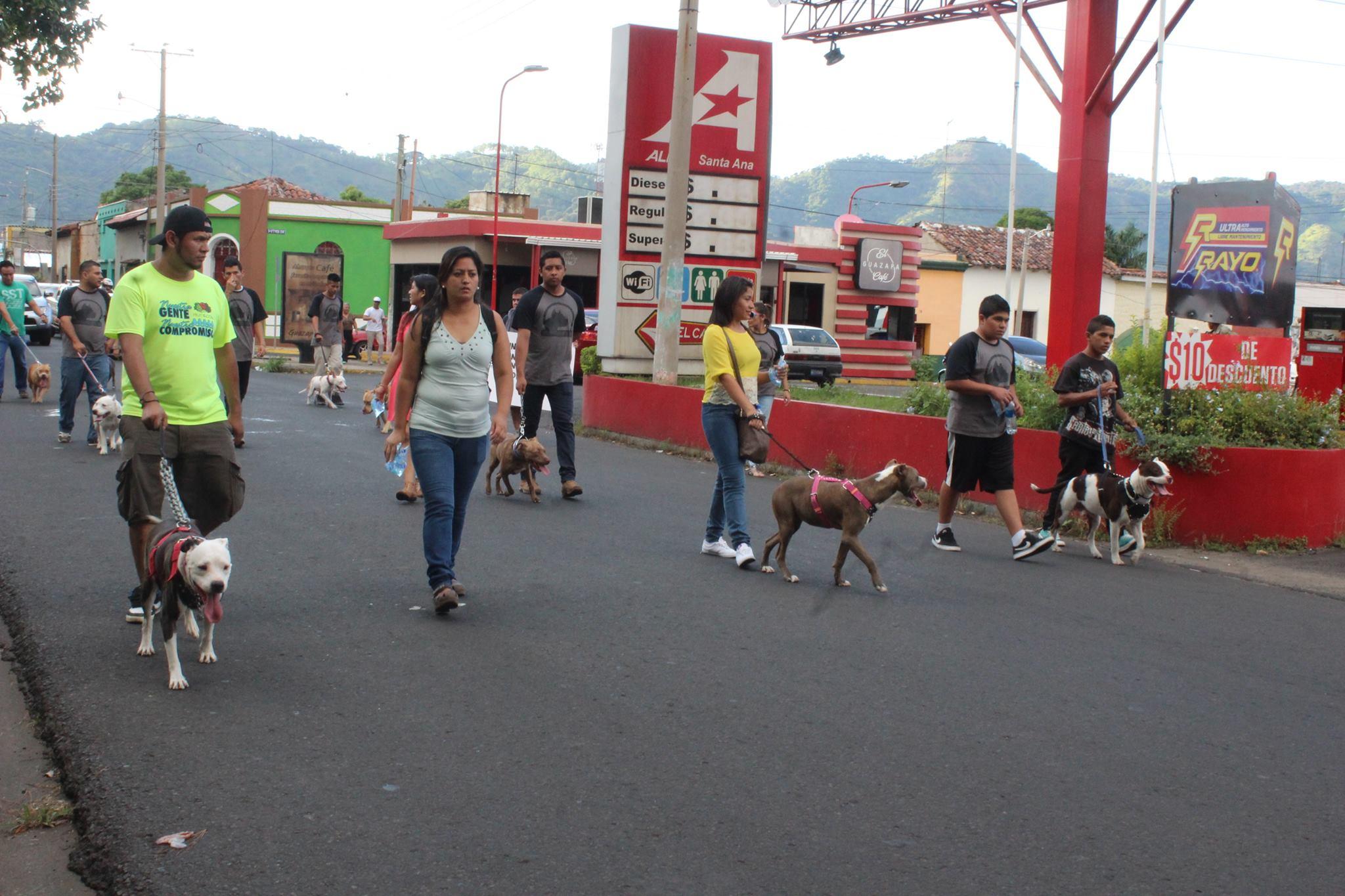 Huellitas Santa Ana realiza caminata para concientizar a la ciudadanía sobre el cuidado que merecen los animales