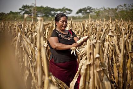 Las mujeres son la clave para lograr un mundo sin hambre