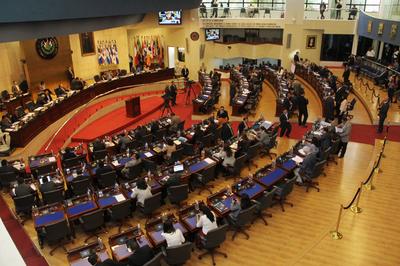 Asamblea Legislativa abre proceso para elección del presidente del TEG