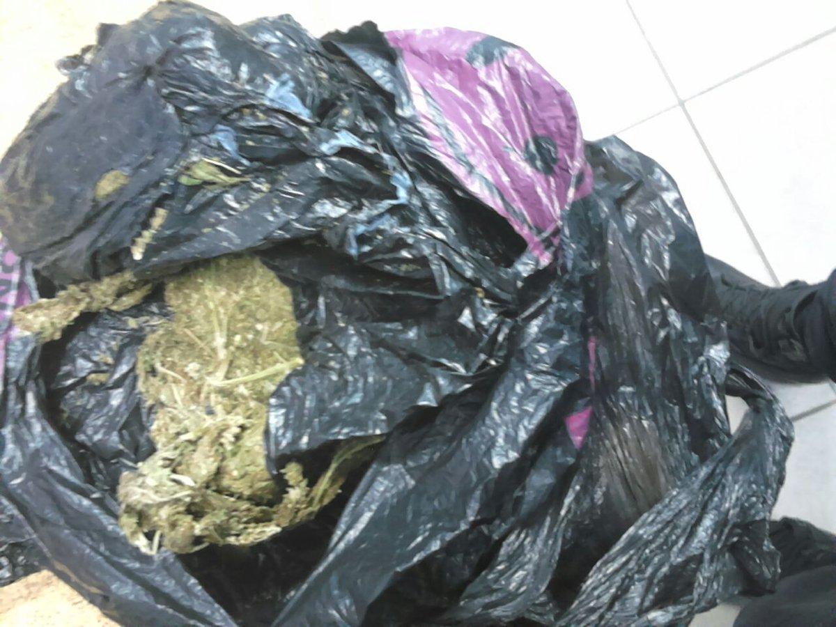 PNC incauta varias porciones de droga en Santa Ana