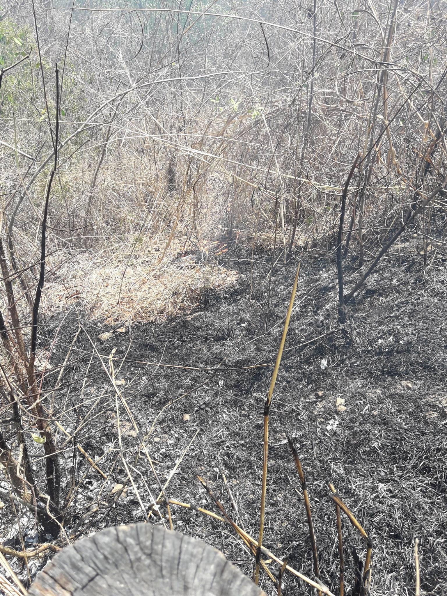 Continúan incendios de maleza seca en el municipio de Metapán