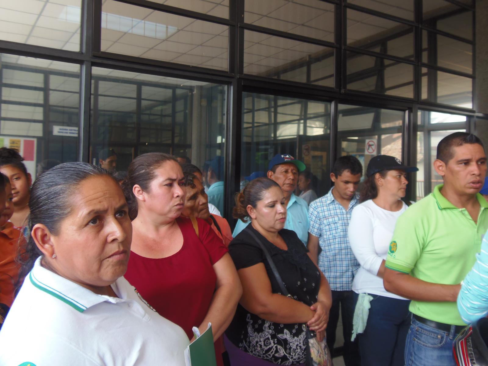 Denuncian tala masiva de árboles en 15 comunidades de Sonsonate
