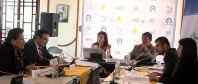 Continúa fase consultiva sobre reforma a la Ley de Asocios Públicos Privados