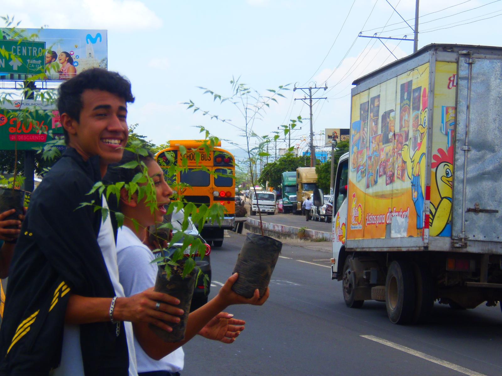 Iván S.A de C.V entregó 2,000 árboles en el día mundial del medio ambiente