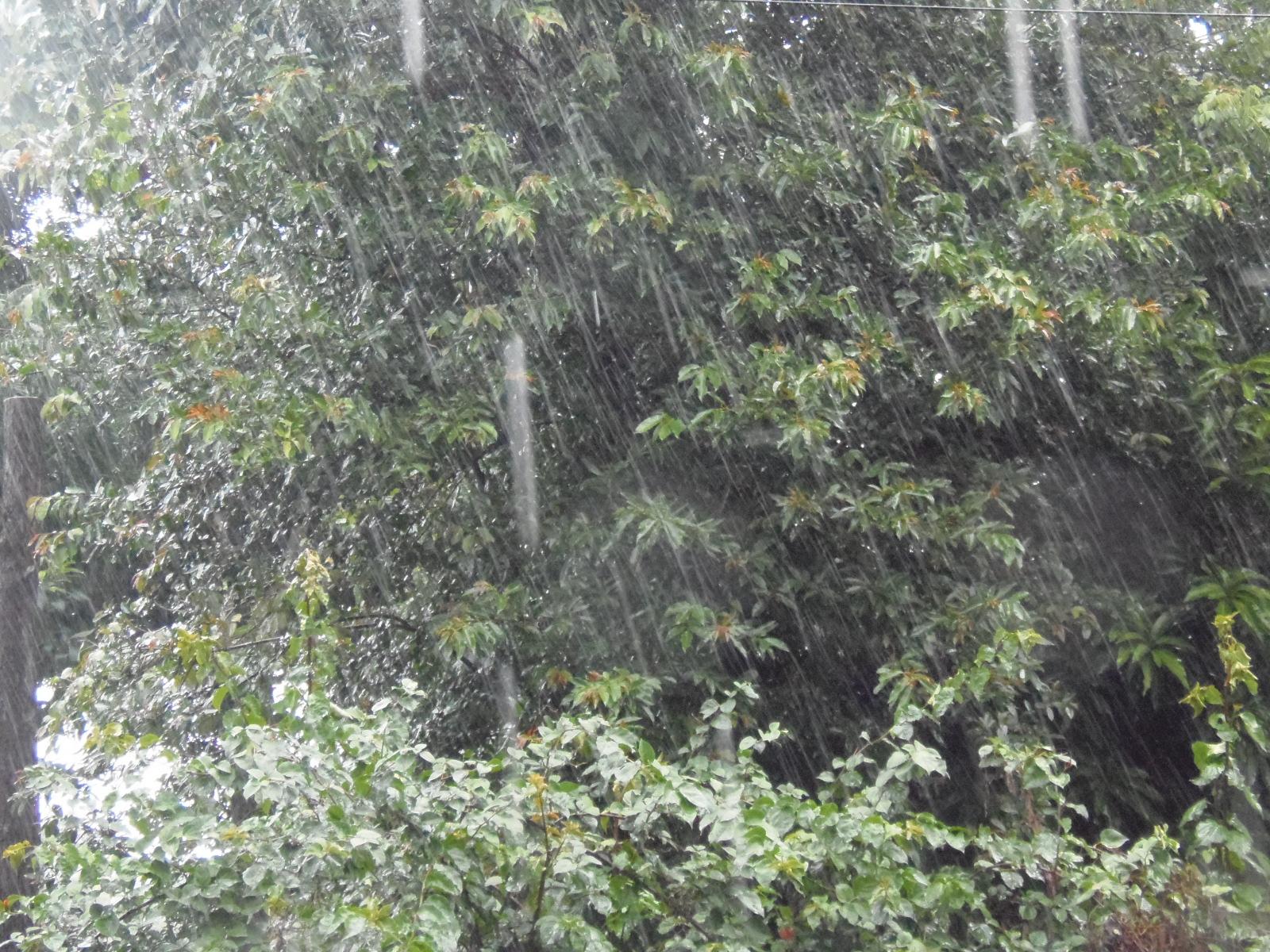 Tormenta Tropical Franklin mantiene lluvia sobre el país
