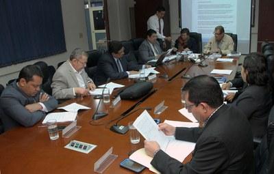 Diputados estudian la reforma de leyes que benefician al sector cafetalero