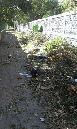 Ciudadanos denuncian un nuevo botadero de basura a cielo abierto