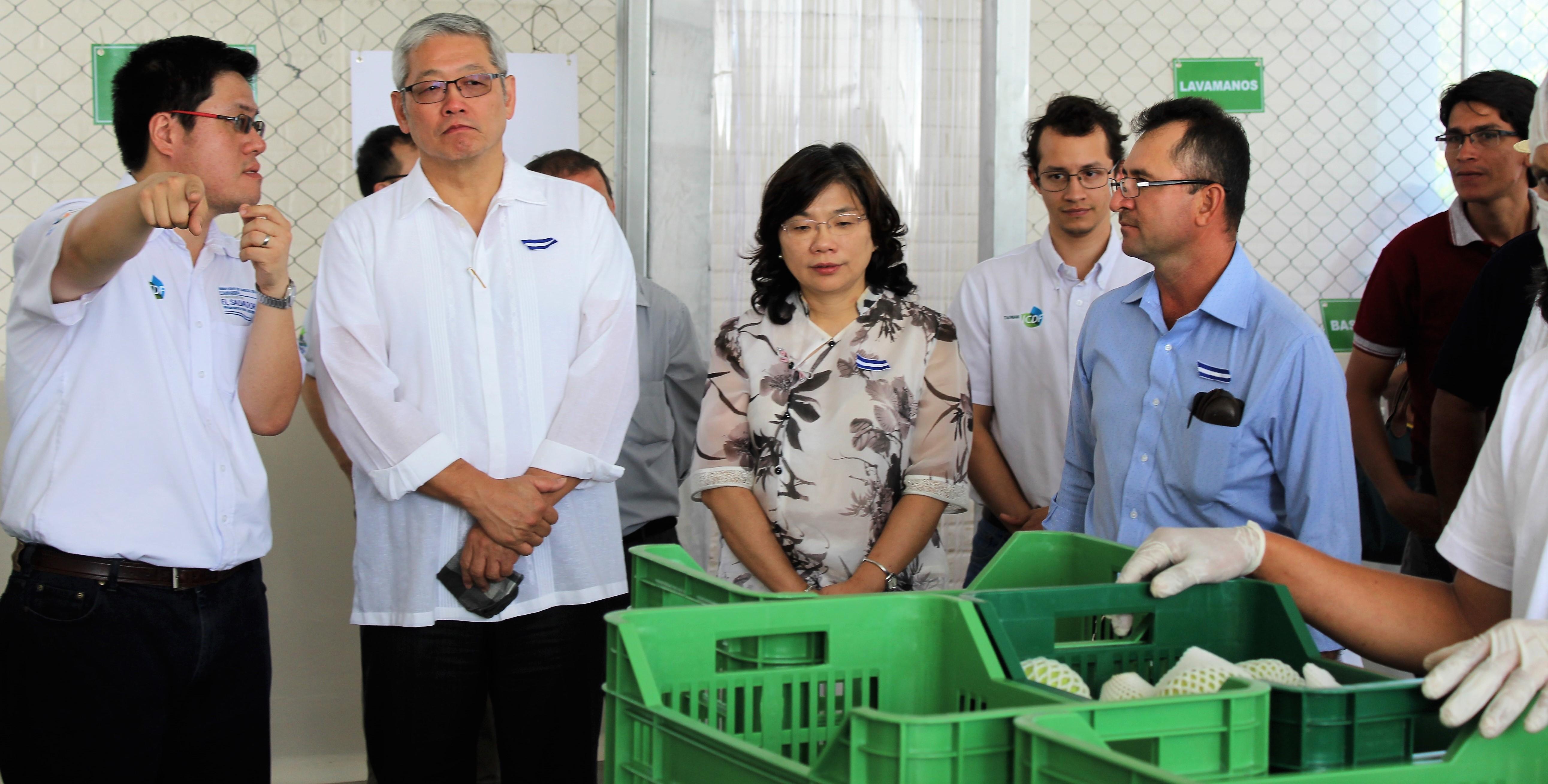 Taiwán y MAG inauguran Centro de acopio de guayaba en Atiocoyo