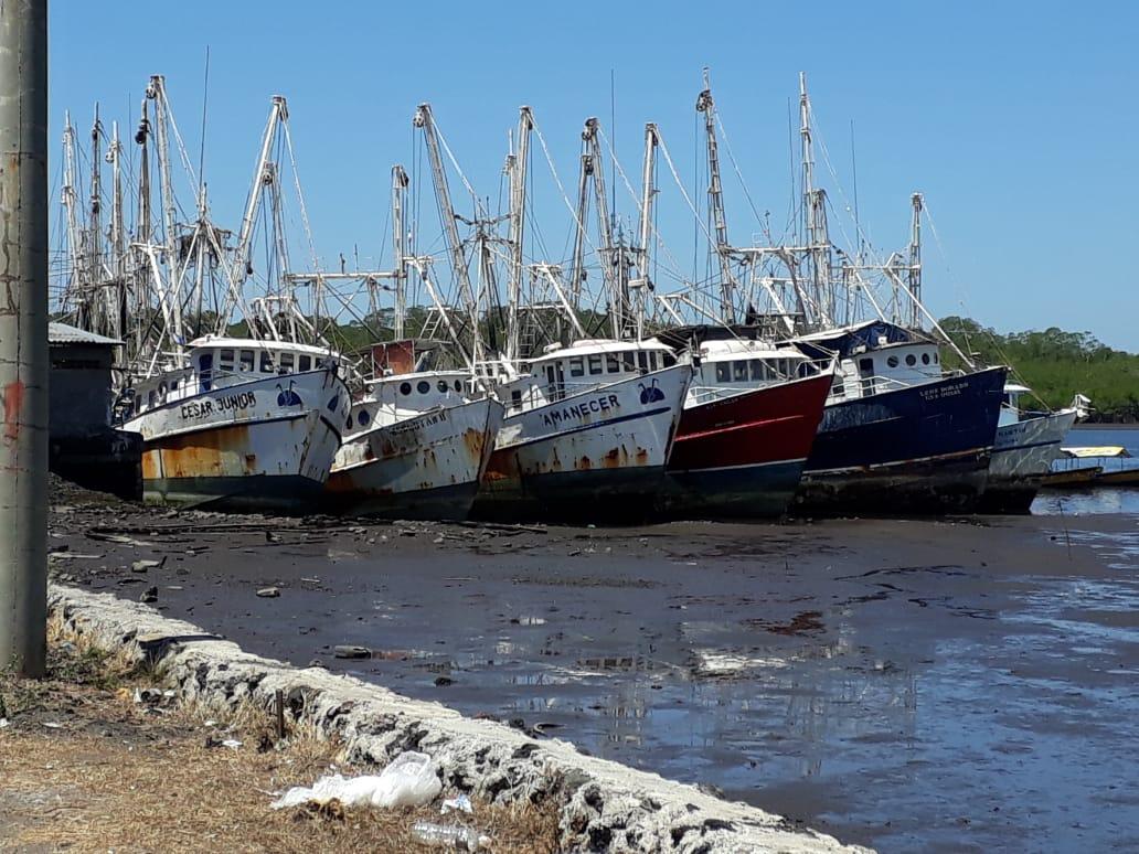 Barcos acatan veda de camarón marino
