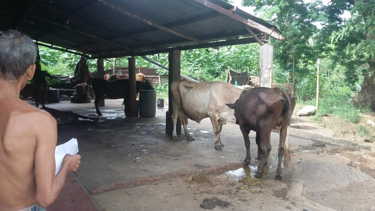 Encuentran reces sin registros en casa comunal de Sensunapán -Sonsonate