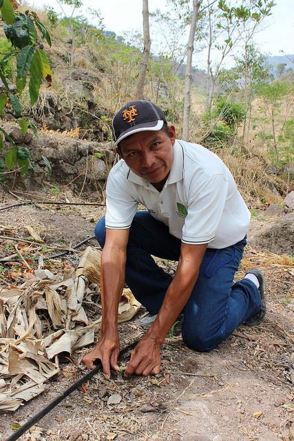 FAO y WFP preocupados por el grave impacto de la sequía entre los más vulnerables de Centroamérica