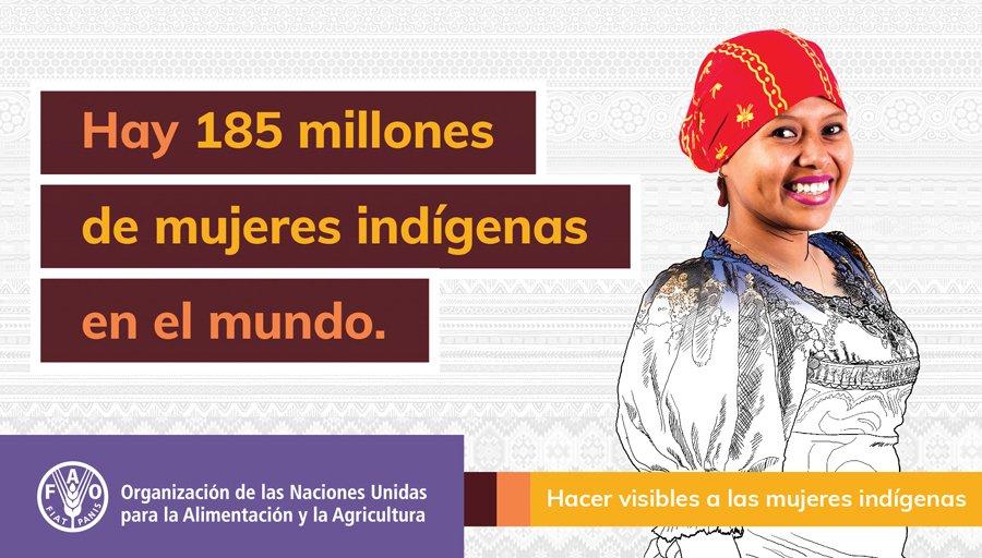 Mujeres indígenas de Sudamérica toman su lugar en la mesa