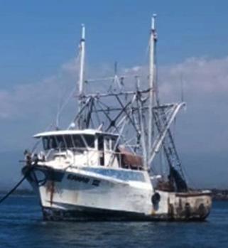 Agentes de la PNC capturaron a un  sujeto por el delito de depredación de fauna marítima.