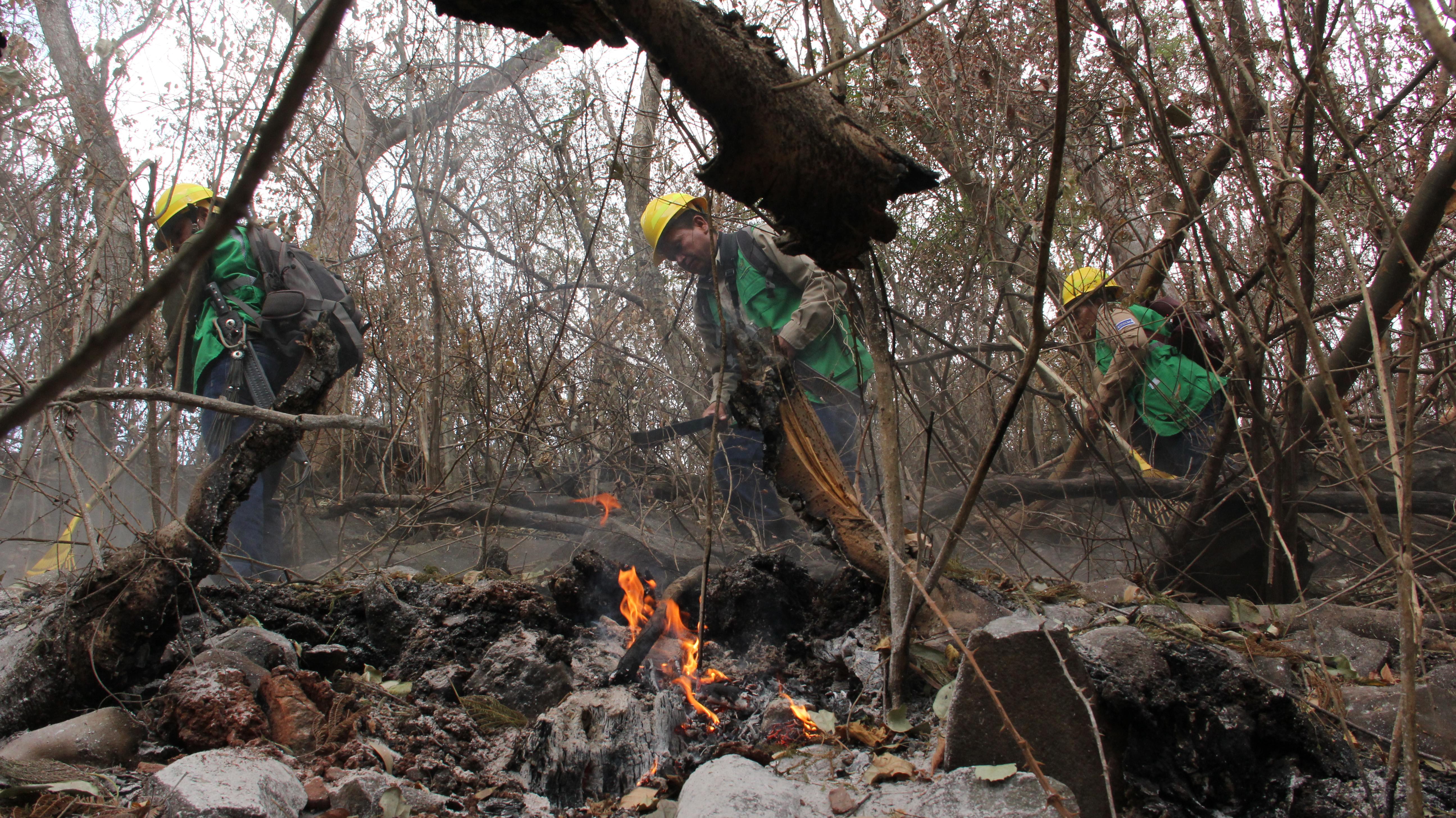Inicia campaña para prevenir incendios forestales en oriente