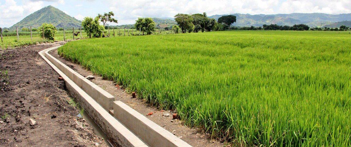 Decreto permitirá crear distrito de riego que beneficiará a productores de El Porvenir
