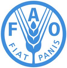 Máximas autoridades agrícolas de las Américas se comprometen a tomar acciones para garantizar la seguridad alimentaria y nutricional en respuesta a la pandemia  Ministros del sector se reunieron de manera virtual por segunda vez en el año, con el auspicio de la Secretaría de Agricultura y Desarrollo Rural de México y la organización de la FAO y el IICA.