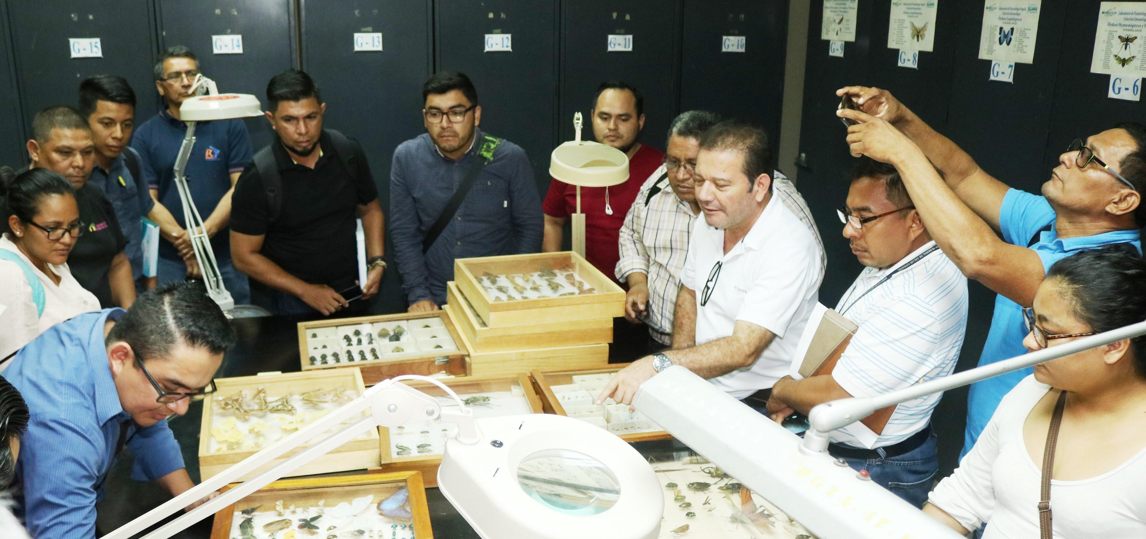 PROFESIONALES DEL MINSAL FORTALECEN CONOCIMIENTOS EN MUSEO ENTOMOLÓGICO PARA PREVENIR Y CONTROLAR VECTORES
