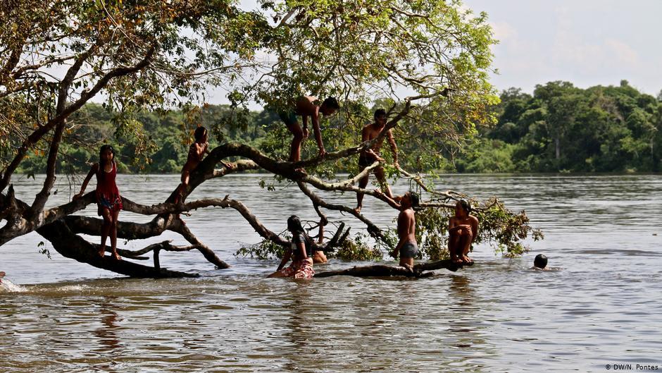 AMÉRICA LATINA ¿Por qué la Amazonía es tan importante para el mundo?
