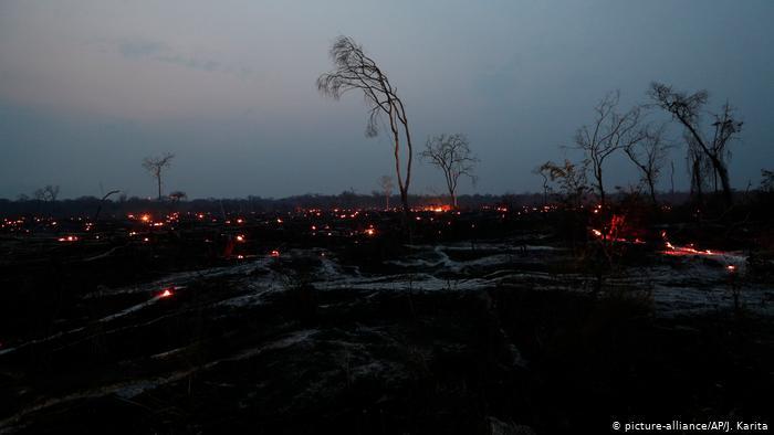 """El Amazonas es el """"mar verde"""" de Bolivia, y Evo Morales también lo monetiza"""