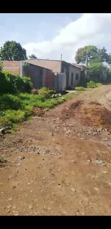Habitantes del cantón Primavera realizan trabajos en salida vial