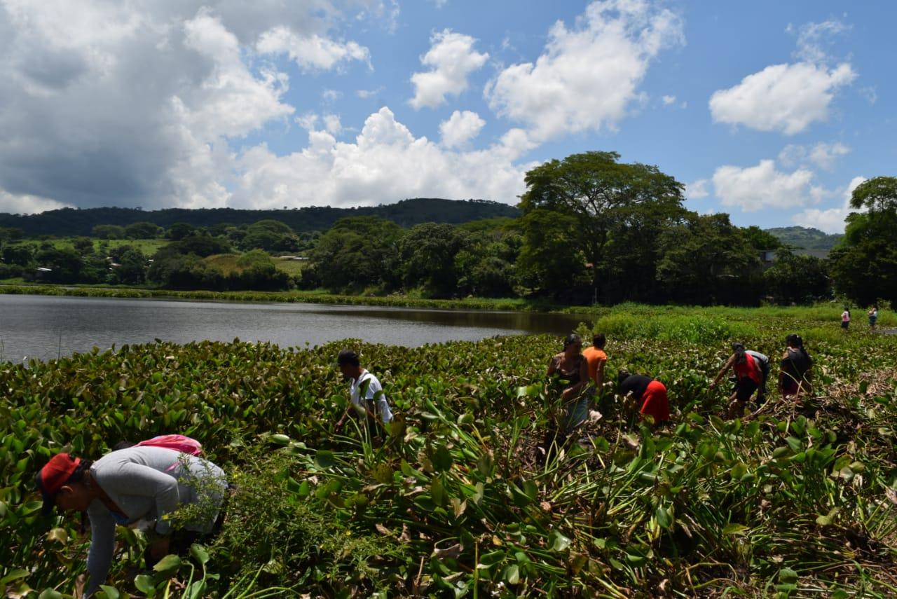 JUEZA AMBIENTAL:  El caso de la contaminación de la Lagunita de Metapan no es nuevo y las instituciones han tenido un papel pasivo.