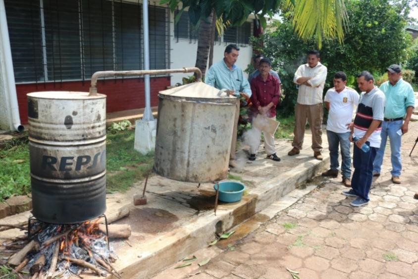 Nueva oportunidad para los apicultores al recuperar la cera en EL Salvador