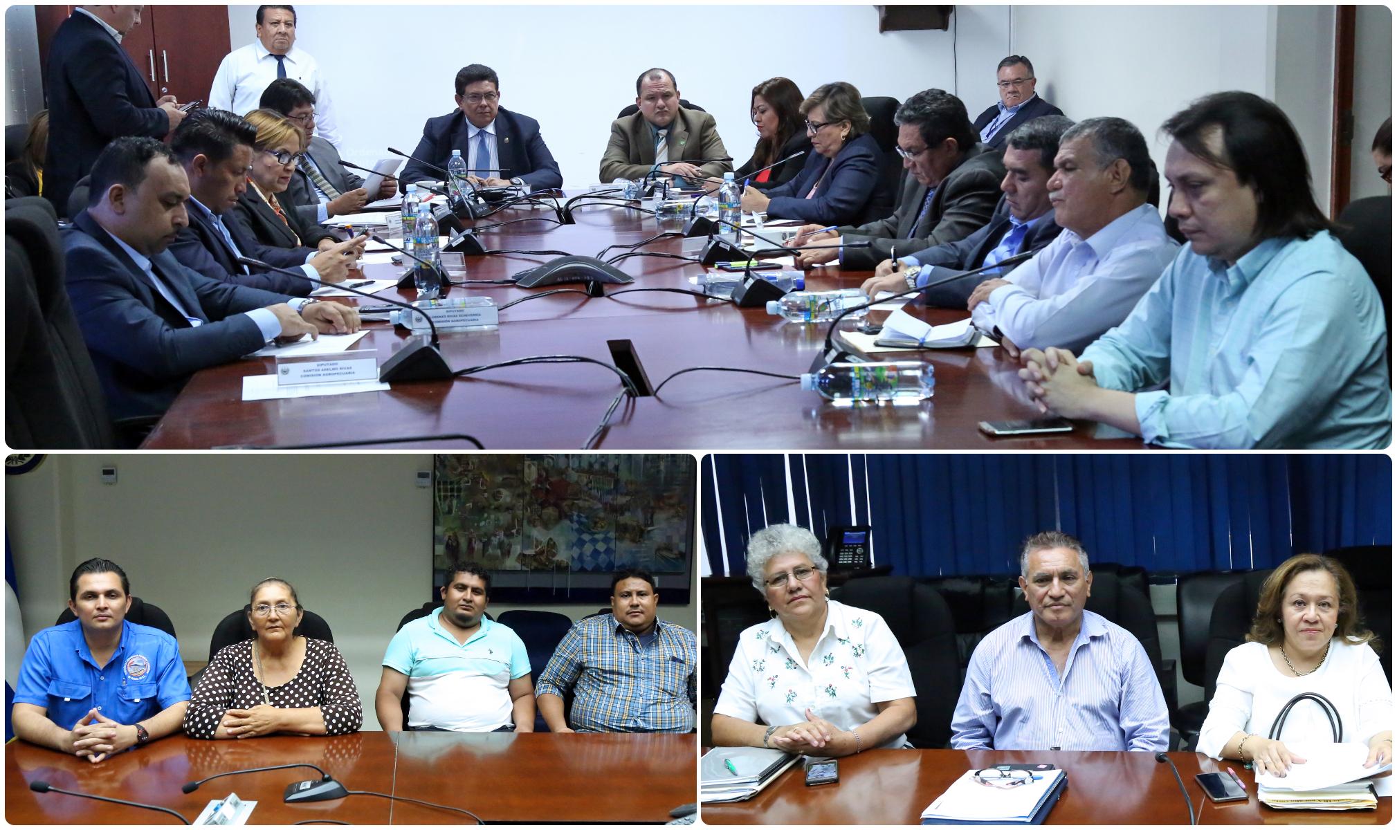 Convocan a reunión con directora de CENDEPESCA por denuncias del sector pesquero artesanal