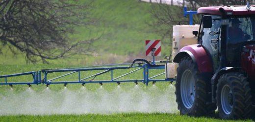 Francia retirará del mercado 36 productos a base de glifosato