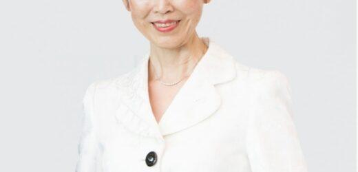 Organización ejecutora: empresa japonesa que recibe pasantes técnicos en prácticas  por DEVNET JAPAN