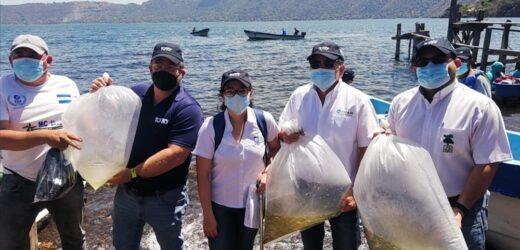 Empresa Privada y Fundación Coatepeque al rescate de la Tilapia en el lago de Coatepeque