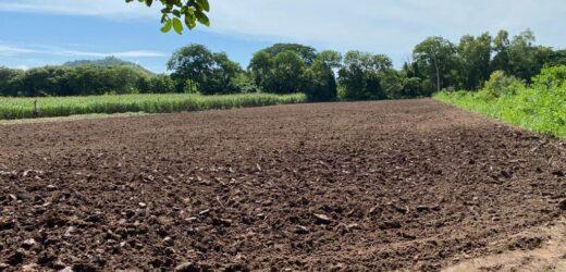 FAO ofrece un nuevo curso gratuito sobre agroecología