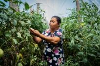 El proyecto Reclima promueve la participación y el empoderamiento de las mujeres rurales